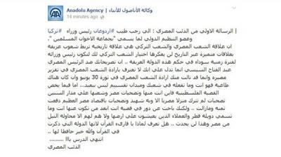 «هاكرز» مصري يخترق وكالة الأناضول رداً على أردوغان