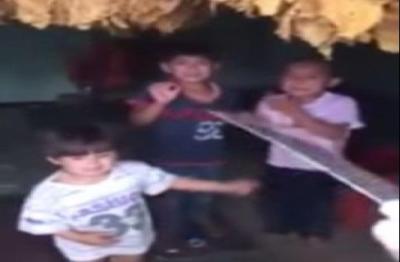 فيديو: لبناني شيعي يهدد أطفال سوريين ب�