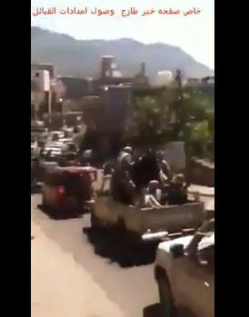 فيديو: حشود قبيلة كبيرة تتوافد إلى مدي�
