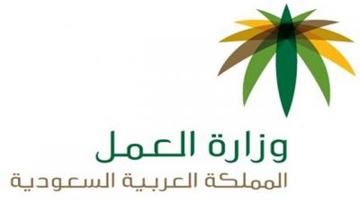 من بركات عاصفة الحزم السعودية تصدر 500 تأشيرة لإستقدام خدامات من اليمن (فيديو)